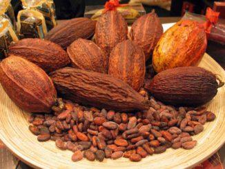Kakao Tip 2 Diyabet'in Başlamasını Geciktirebilir Mi?