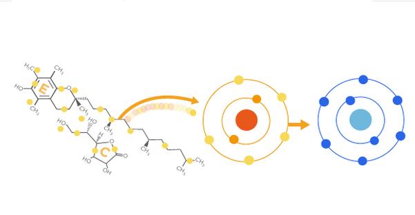 Antioksidanlar Farede Malign Melanom Metastazını Artırıyor